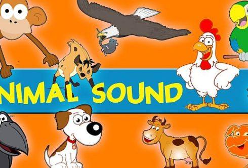 ТОП 5 приложений Android звуки животных